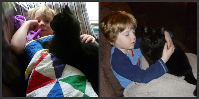 Delilah with the boys Collage