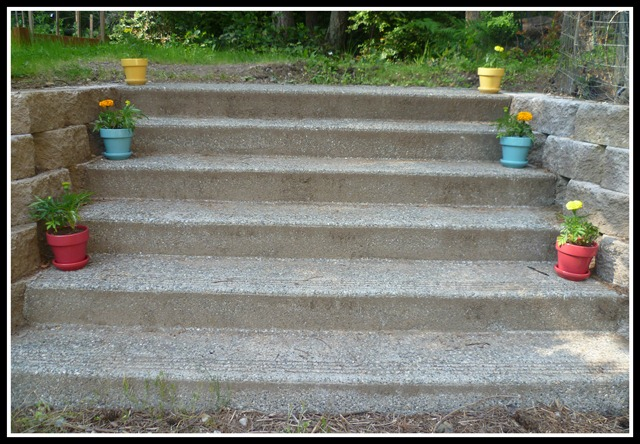 Stairs after flowers