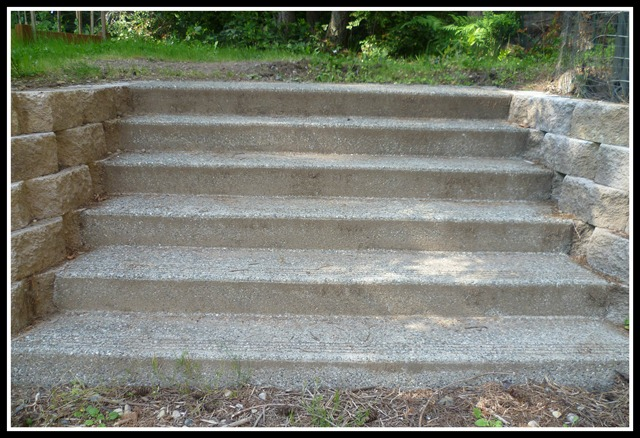 Stairs before flowers