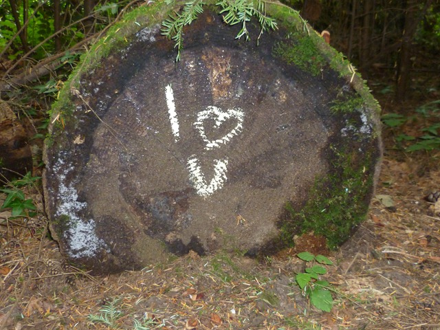 Forest Graffiti