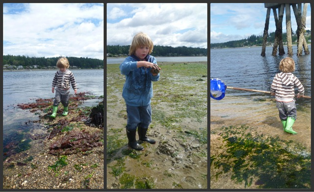 Low tide collage of boys