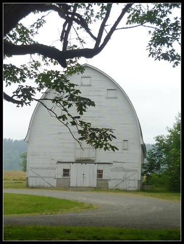 Nisqually Barn 1
