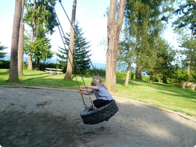 Tire Swing 3