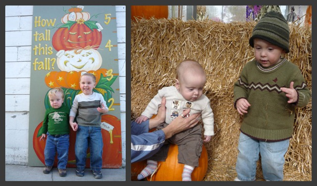 Pumpkin patch 09 and 08 collage