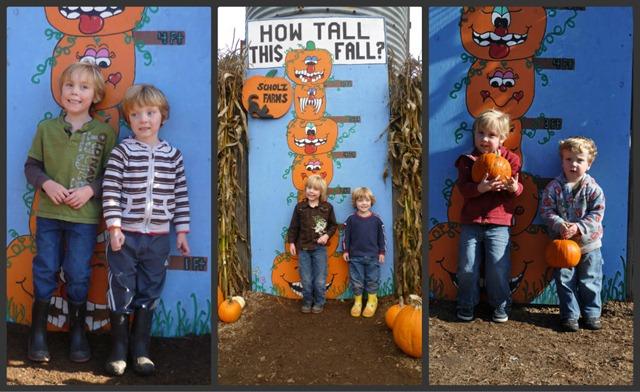 Pumpkin Patch last three years collage