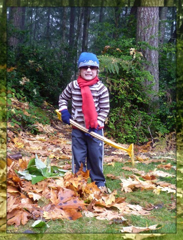 Carter raking leaves