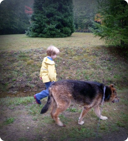 Dexter walking with Carter