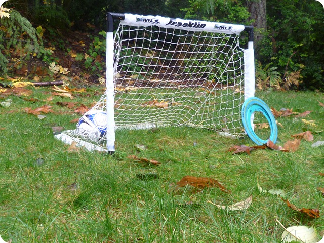 Soccer goal and Frisbee