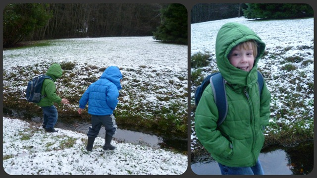 First snowfall 2012 Collage