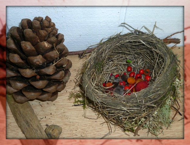 Collections in a Nest