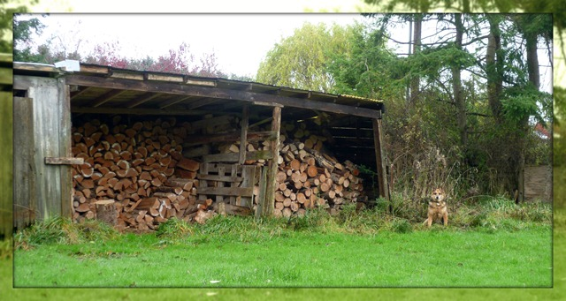 Visit - Barn with wood