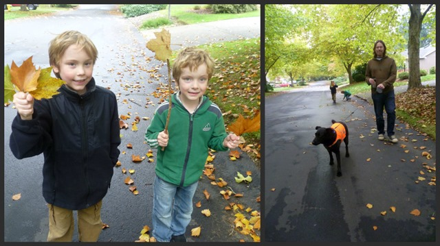 Weekend Walk Collage