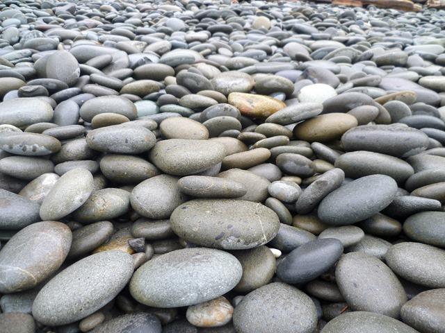 Kalaloch 2014 Rocks