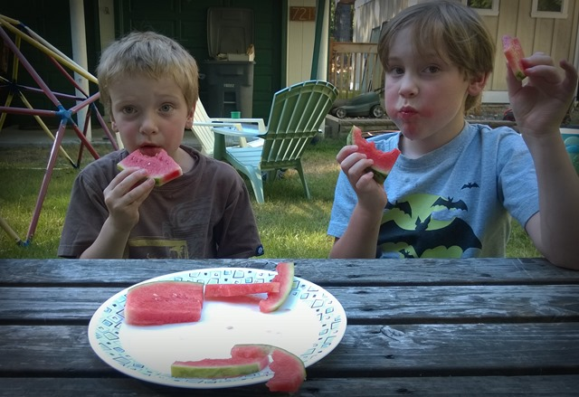 Watermelon Face Stuffing