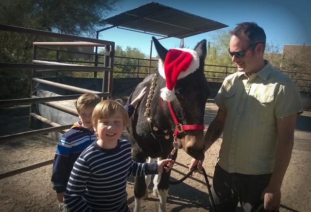 Herman the Christmas Mule