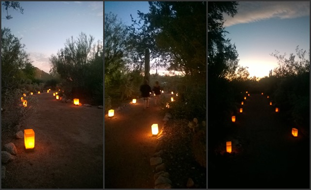 Luminaria Collage