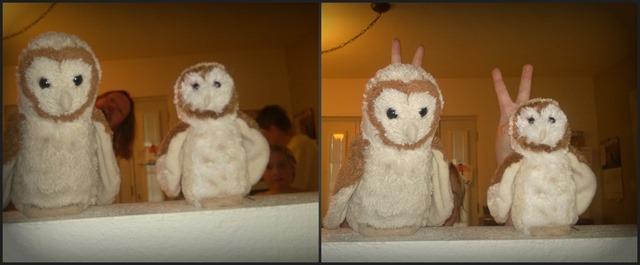 OwlCollage5